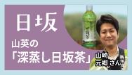日坂-山英の「深蒸し日坂茶」